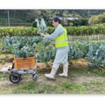 「自動追従で農作物の収穫をサポート」アトラックラボらがロボット車を開発
