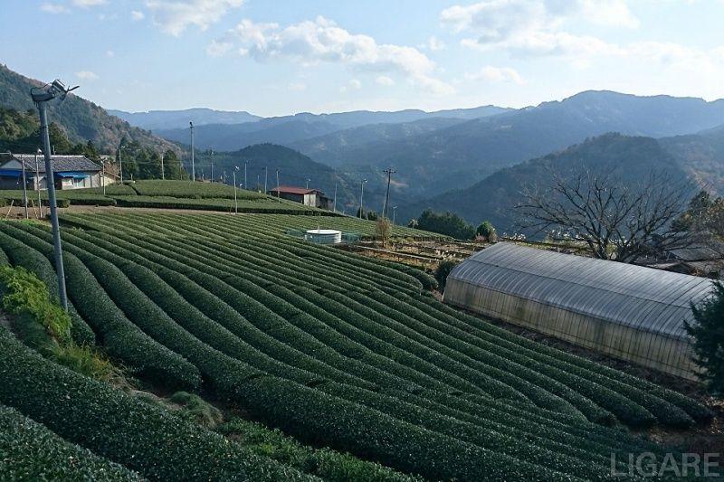 春野町の風景(提供:浜松市)