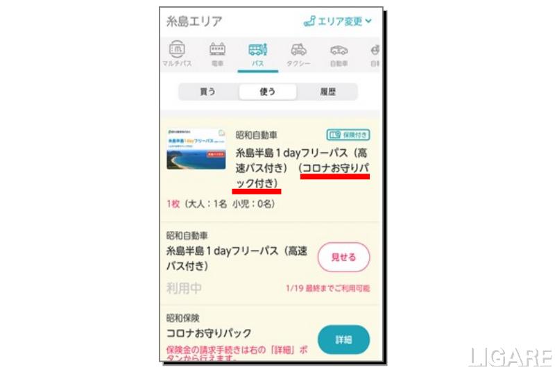 「コロナお守りパック」付きデジタルチケットのイメージ