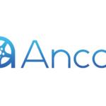 中古車個人間売買Ancar資金調達実施 決済機能や整備工場マッチングの拡大へ