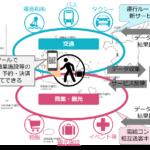 沖縄県八重山諸島でのMaaS実証実験が国土交通省の「新モビリティサービス推進事業」に選定