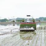 ヤンマーアグリ 高精度の自動運転を実現した密苗田植機を発売 農作業の効率化へ